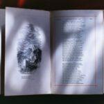 Meer te weten komen over de kunstgeschiedenis door een hoorcollege